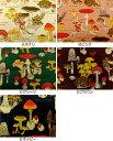 入園入学 生地 布 くろすろーど きのこ柄 Shima Shima ボタニカルアート CR8888−2 きのこ図鑑 カラフルキノコ
