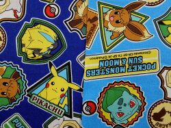 G6069-1キャラクター生地布ポケットモンスターG6069ポケモン2019年入園入学レッスンバッグ体操着入れ巾着袋に商用利用不可