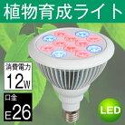 LED電球植物育成サンプランター水耕栽培ランプ室内用口金E2612WLED植物育成用ランププラントライト園芸