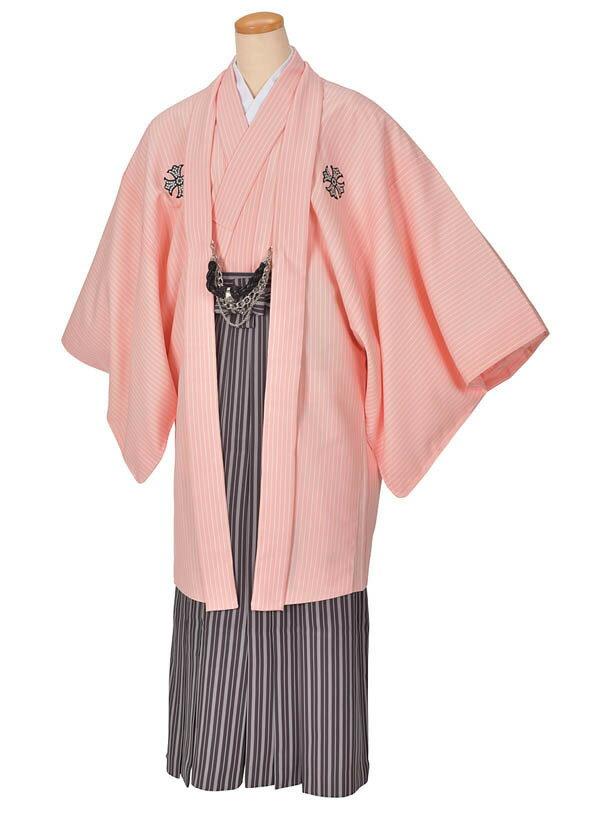 【レンタル】ピンクトライバル紋付