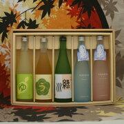 【女子会納涼限定】カラフルなボトルで焼酎・日本酒・リキュールの五本セット
