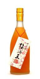 梅酒王 720ml リキュール類18度〜19度 老松酒造 大分県産 九州【ギフト リキュール】