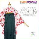 Juniorhakama46-1