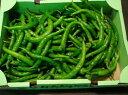 京都中央卸売市場中西青果仲卸直送だから新鮮!京野菜極上品訳あり伏見甘長唐辛子1kg曲がり 大きさ不揃い ふしみあまながとうがらし、伏見唐辛子、伏見とうがらし