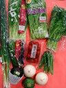 御中元 旬の京野菜と京都府産野菜のお試しセット