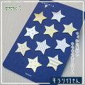 MIDORI【ミドリ】フィルム素材のキラリと光るふせんキラリ付箋100枚入りキラリ星柄