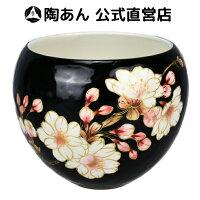 京焼 清水焼 陶あん 色絵付け 玉湯呑(黒地×八重桜)