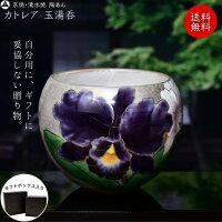京焼 清水焼 陶あん 色絵付け 玉湯呑(銀地×カトレア)