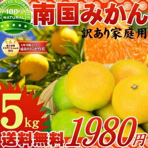 太陽の恵みたっぷり!九州南国みかん5kg