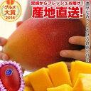 【送料無料】特大宮崎完熟マンゴー宮崎からお届けする南国の香り・とろける美味しさがいっぱいの完熟マンゴ ...