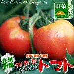 完熟したとってもジューシィーなトマト