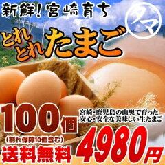 九州の霧島山麓で採れた新鮮な美味しいたまご【送料無料】九州育ちの絶品たまごこだわり新鮮な...