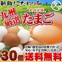 【送料無料】【定期購入】九州育ちのこだわりたまご