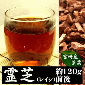 The beauty effect that is nice towards choice bracket fungus of the genus Fomes (lychee) wild powder 〓 woman! !