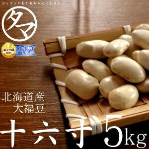 北海道産A級品『十六寸・大福豆』28年度産北海道で育った綺麗な白い豆 5000g|タマチャンショップ 健康食品 ギフト たまちゃんショップ 女性 自然食品 国産 ナチュラルヘルシー ヘルシー 美容