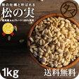 【送料無料】松の実 1kg(無添加 無塩 ナチュラル)完全無添加!!特級AAグレード松の実です。大粒でおそらく日本に入ってくる中で最高級ランクの品質です。【Pine nut/無塩/無油/無着色】