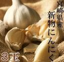 九州産のにんにく3?4玉極少量しか作られてない宮崎産/鹿児島産のにんにくが限定入荷!贅沢すぎ...