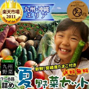 【送料無料】九州野菜ミニミニお試しセット九州野菜7〜8品でお届け九州で摂れた美味しい野菜をタマチャンショップが選りすぐりでお届け!【ご当地野菜/九州】【お試しセット】