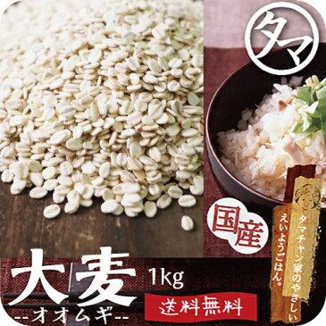 【送料無料】九州産 大麦(押し麦) 1kg食べる食物繊維・大麦βグルカンの宝庫な食材。注目される第6の栄養素とされる食物繊維を豊富に含んだ食材。炊飯や料理にお使い頂けます。|オオムギ 胚芽押し麦 胚芽押麦 無添加 遺伝子組み換えなし 国産 オオムギ