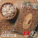 【送料無料】超希少な紫もち麦500g(九州産/29年度産)紫が濃い状態で収穫したもち麦です。もち麦に比べてポリフェノールの1種、アントシアニジンを多く含み、より一層もちもちぷちぷちの食感が楽しめます【国産 もち麦/無添加/ダイシモチ/モチムギ】