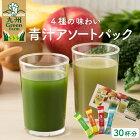 九州GreenFarmアソートパック30袋青汁ギフト九州産国産