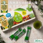 九州GreenFarm酵素青汁30袋青汁ギフト九州産国産