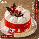 2021年予約受付【 クリスマスケーキ 5種のフルーツ入りホイップクリームケーキ