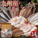【送料無料】九州の一夜干しセット 干物 低温熟成 無添加