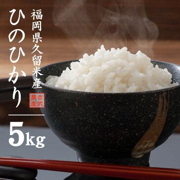 【送料無料】福岡県 ひのひかり 5kg 久留米産 米