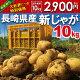 【秋じゃが】新じゃが【日本一】じゃがいも長崎県島原産馬鈴薯10kg【鉄腕DASH!】ジャガ…