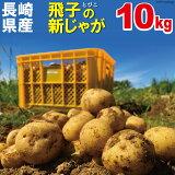 【予約受付中 12月中旬より順次発送】【新じゃが】秋じゃが【日本一】じゃがいも 10kg 長崎県島原産 馬鈴薯 ジャガイモ ばれいしょ【送料無料】