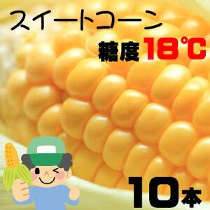 生でも美味しい糖度18度の大分県竹田(菅生すごう)産トウモロコシを朝収穫してその日に発送し...