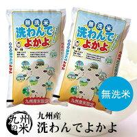 送料無料 令和2年産 無洗米 洗わんでよかよ10kg(5kg×2袋)