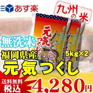 【無洗米】(27年産)(減農薬)(福岡県産)元気つくし5kg×2袋 【10kg】(送料無料)(…