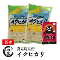 送料無料 令和3年産新米 ふりかけセット 無洗米 鹿児島県産イクヒカリ10kg(5kg×2袋)