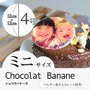 """【2〜4人向け】""""写真プレート付き""""ベルギー産チョコレートと..."""