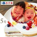 写真ケーキ 2種のチーズケーキを楽しめる