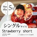 """【5〜6人向け】""""写真プレート付き""""人気のイチゴをたっぷり使..."""