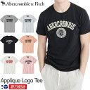 【新作!】アバクロンビー&フィッチ 正規品 アバクロ Abercrombie&Fitch メンズ Tシャツ:Applique Logo Tee ホワイト ネイビー グレー ピンク他