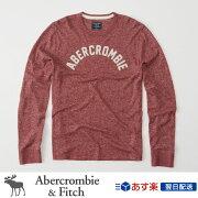 アバクロンビー フィッチ アバクロ Abercrombie Tシャツ