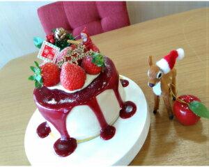 ビーガン&低糖質 Xmasケーキ『とろ〜りベリーソースのお豆腐ショートケーキ・キット』12センチ(4〜6人用)
