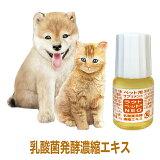 犬 猫 ペット 用 サプリ サプリメント 乳酸菌 ビフィズス菌 発酵 腸活 菌活 老犬 栄養 ラクトペットNEO