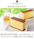 さかえ屋 蜂蜜カステラ 一斤10切×6