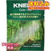 【DM便送料込み】クナイプ グーテルフト パイン&モミの香り 40g