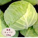 【クール便送料込】キャベツ約10kg 4〜9玉入 キャベツ ...