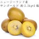 【クール便送料込】【9.9キロ】ゼスプリ サンゴールドキウイ