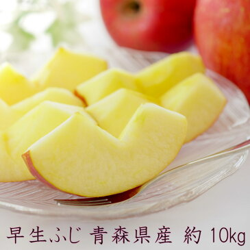 【特選10キロ】リンゴ 早生ふじ 10kg 糖度12度以上 りんご 林檎 早生 ふじ 青森県産 ご家庭用 シェア用 贈答品用 送料無料 JA 光センサー選果 訳ありではありません
