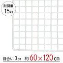 【大型便・時間指定不可】 ワイヤーネット 白 60×120