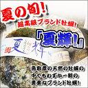 天然岩牡蠣(ボンベ)5個セット 送料無料!ボンべを使い漁をする岩牡蠣です。天然岩牡蠣 夏輝 ボンベ牡蠣(活)特大500g〜 850g前後 ×5個セット 殻割り対応可!鳥取産 朝採れ 刺身用 送料無料(岩ガキ/岩がき)