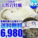 天然岩牡蠣なつき10個セット 送料無料!天然岩牡蠣 (生食用カキ)夏輝 牡蠣(活)特大400〜500g前...